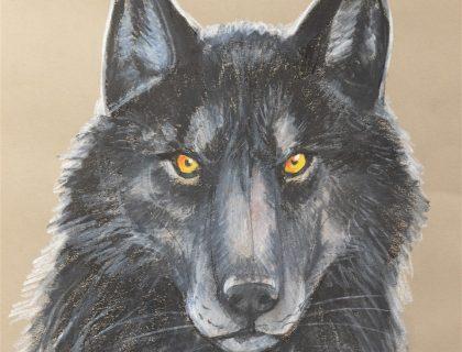 der_schwarze_wolf